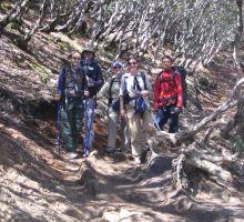 Julia, Cas, Denise, Liz and Ang Nima on the trek into basecamp